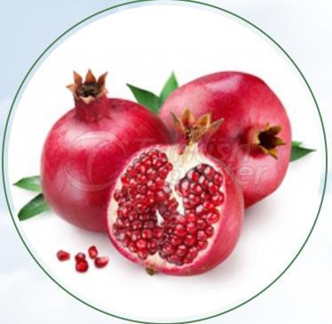 Pomegranate Hicaz
