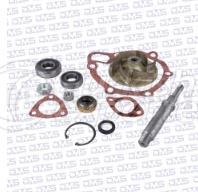 Water Pump Repair Kit DMS 02 319 1