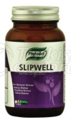 Slipwell
