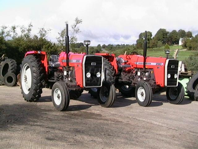 NEW TRACTOR MASSEY FERGUSON MF 290
