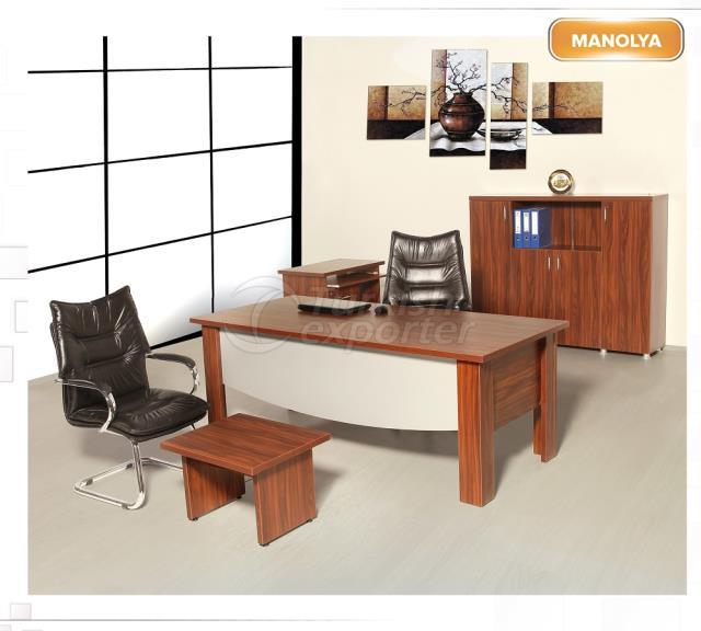 Исполнительный стол Manolya
