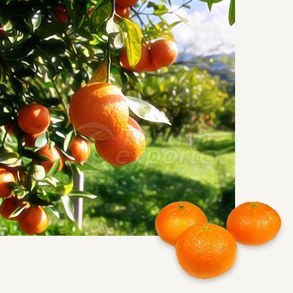 Mandarin Ortanique