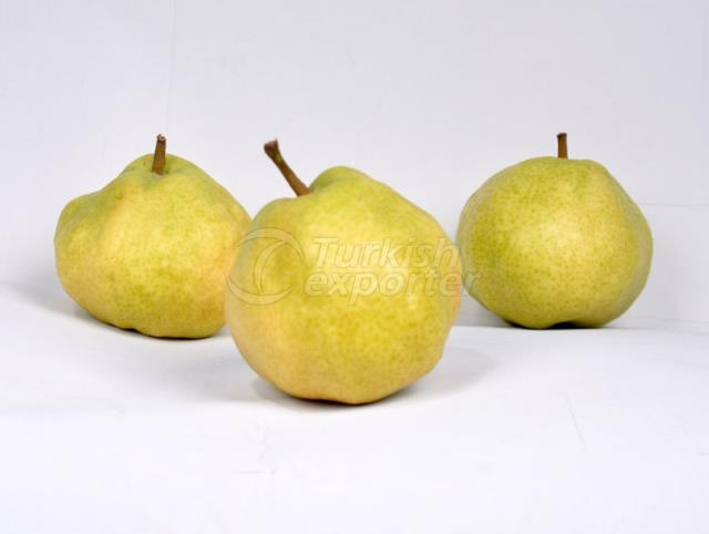 Pomme Deveci Pears