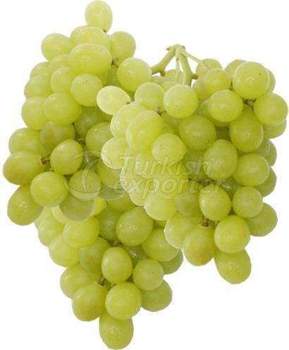 Superior Seedless Grape