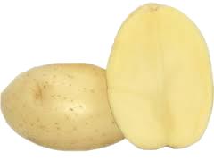 borwina