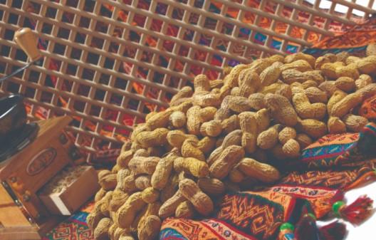 الفول السوداني المقشر