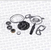 Water Pump Repair Kit DMS 02 3231