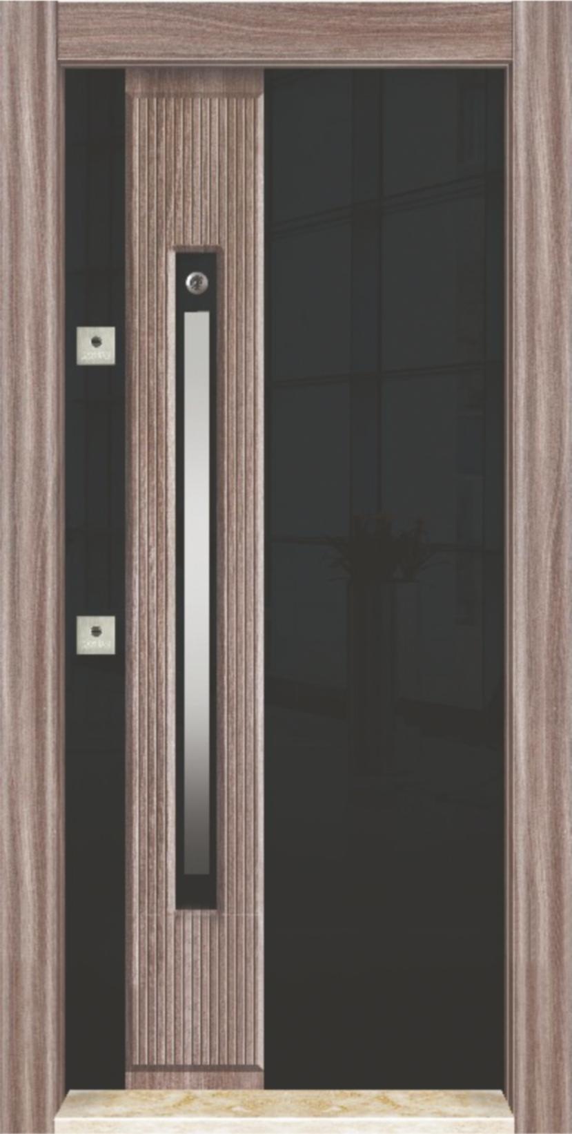 Steel Door TS-206