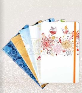 Notebook 5550