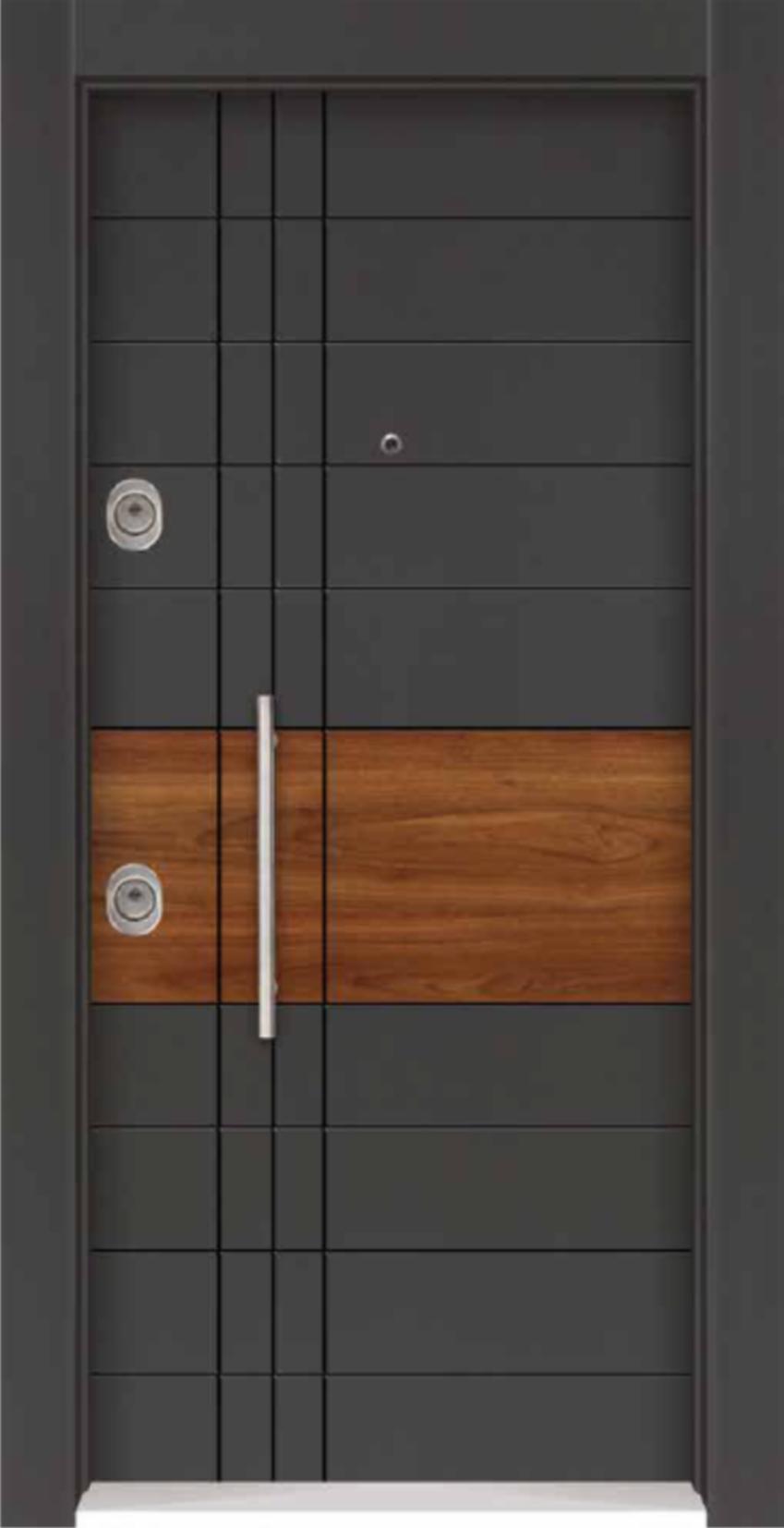 Steel Door RS-509