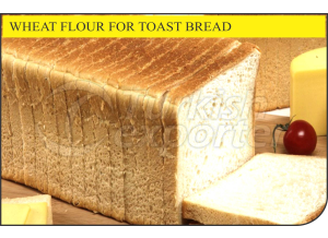 Wheat Flour for Tost Bread