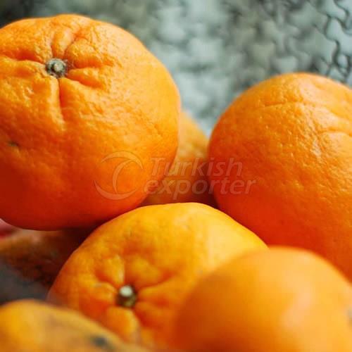 Mandarin Robinson