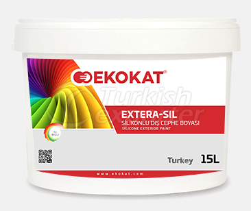 Silicone Exterior Painting