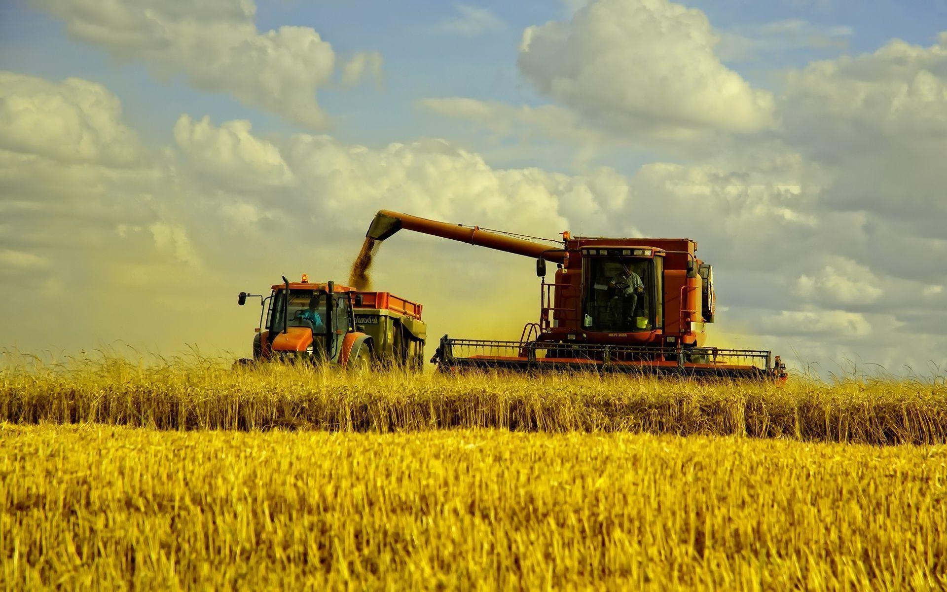 آلات زراعية - معدات