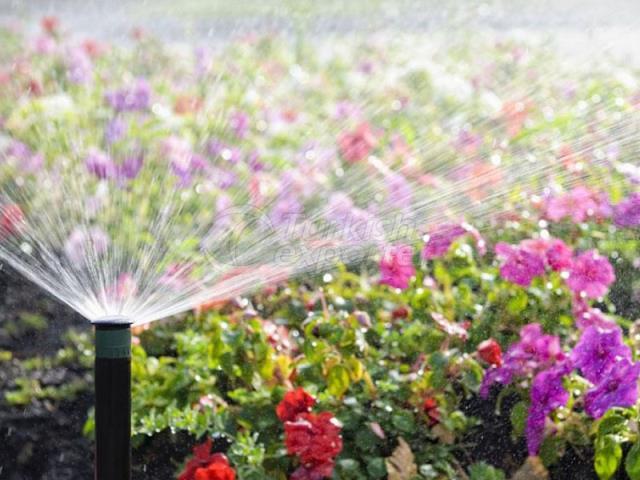 Sistema de Irrigação Agrícola-Paisagista