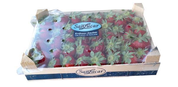 Taze Meyve-Sebze Ambalajı