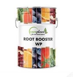 ROOT BOOSTER WP