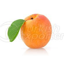 Fruits Apricot