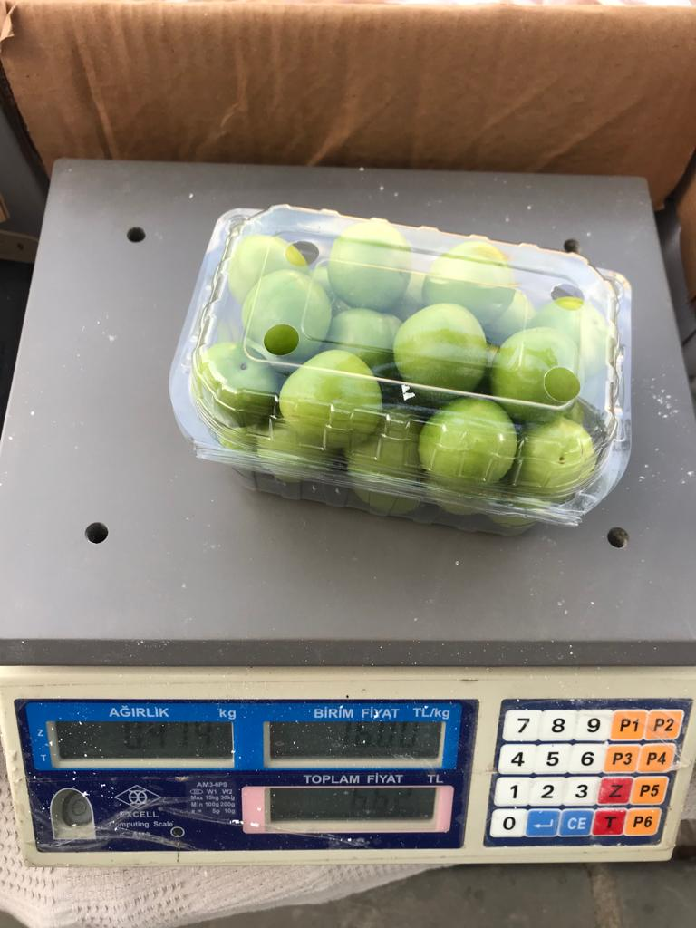 fresh green plum