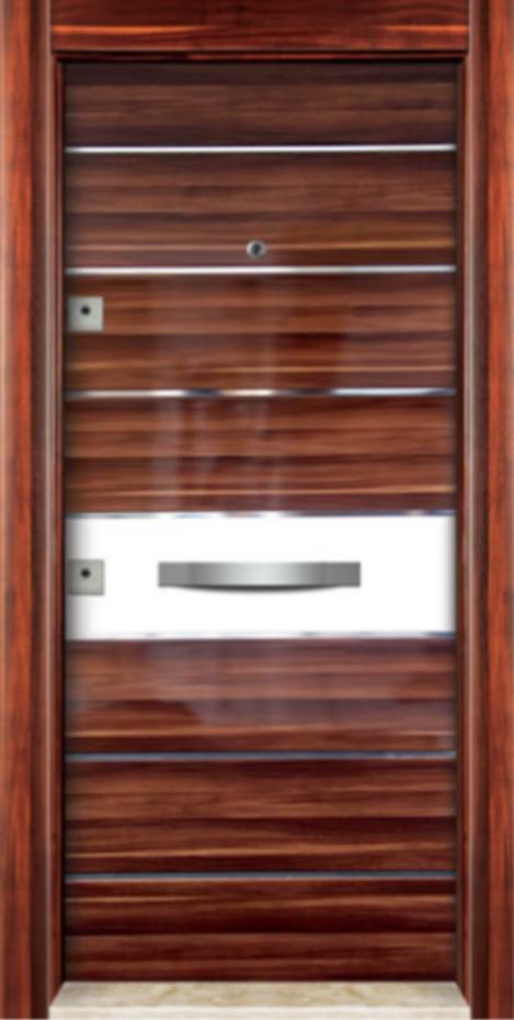 Steel Door PS-304