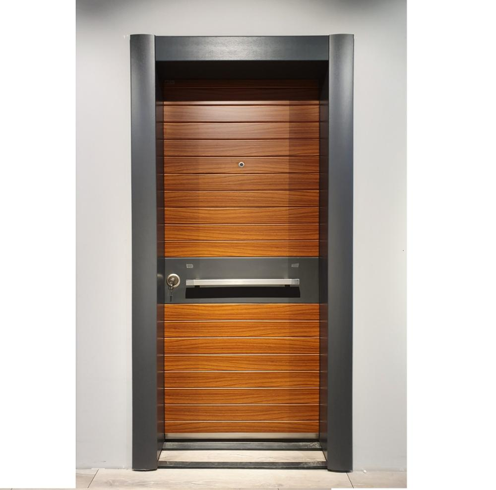 Luxury Steel Safety Door