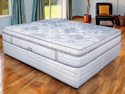 Versalis Orthopedic Bed