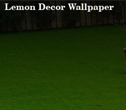 LEMON DECOR WALLPAPER