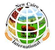 NEW CAIRO INTERNATIONAL