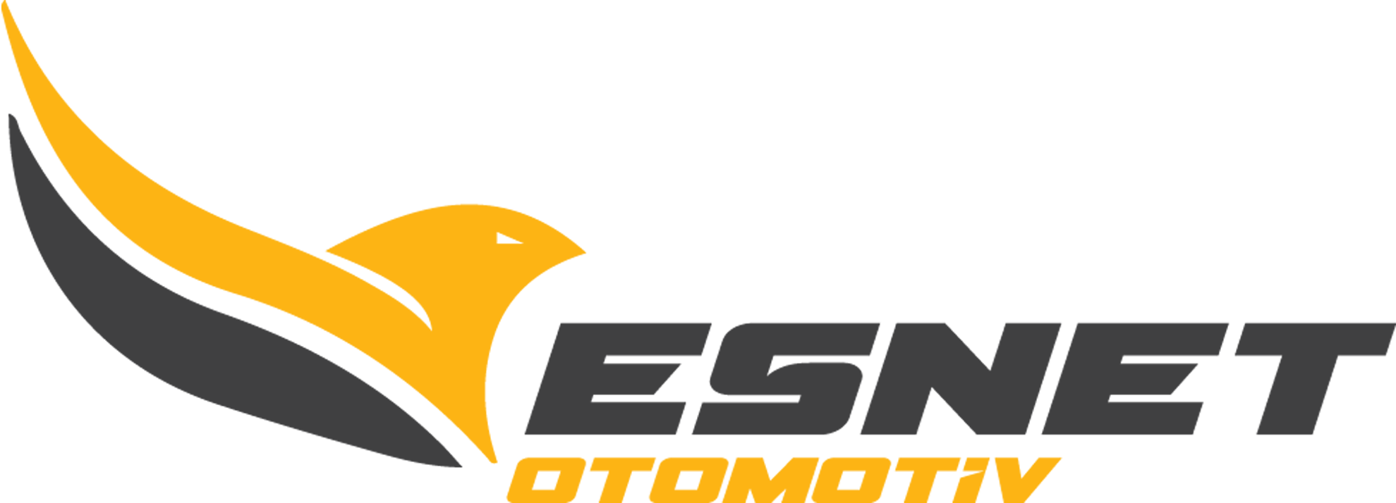 Esnet Automotive