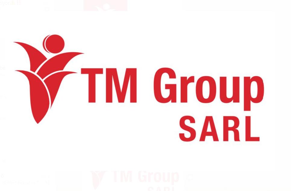 TM GROUP  GENERAL TRANDING FZE