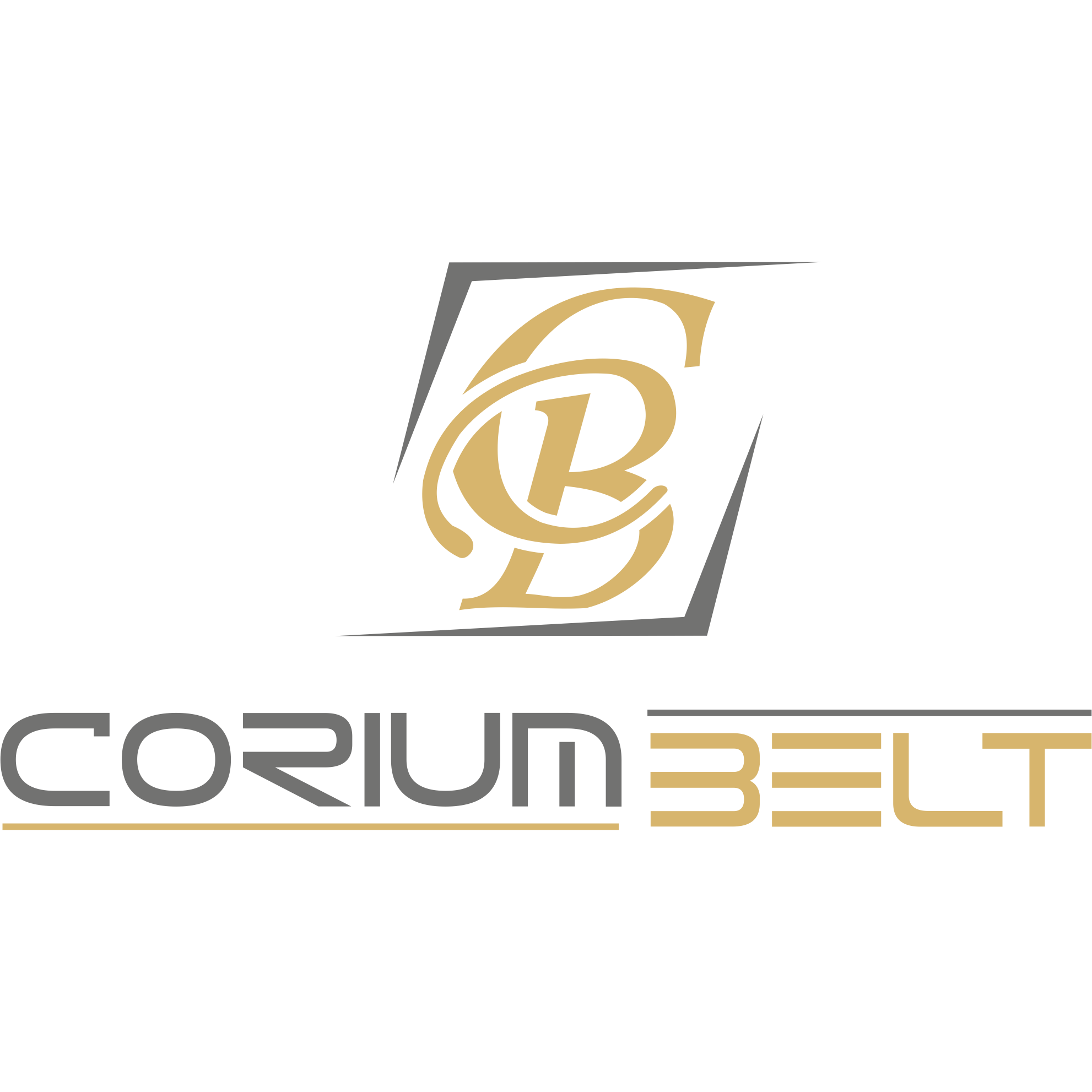 CORIUM BELT DERI LTD. STI.