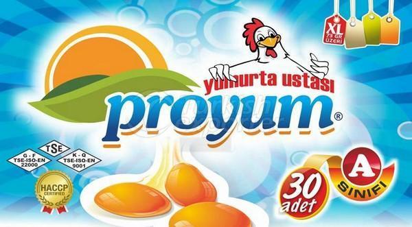 بيض  XL Proyum