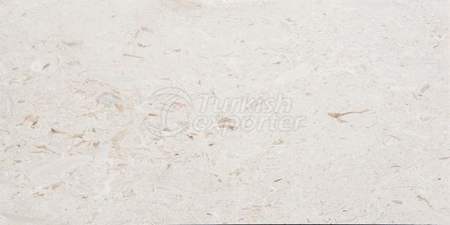 Shellstone Polished Marble