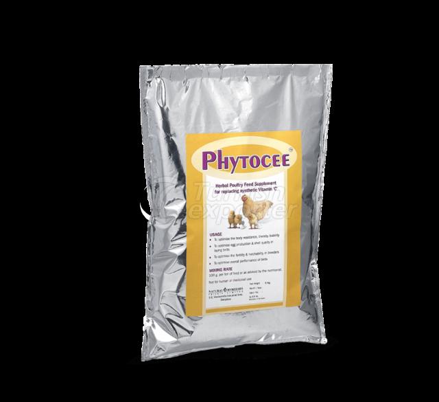 Phytocee Powder