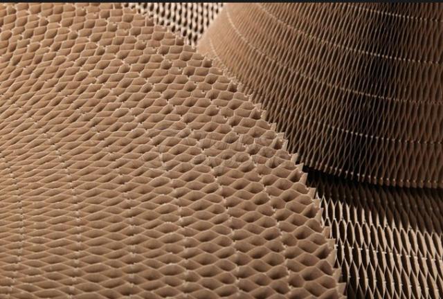 خلية نحل ورقي